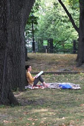 Central Park #05