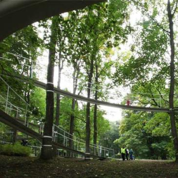 http://www.dezeen.com/2011/10/10/a-path-in-the-forest-by-tetsuo-kondo-architects/