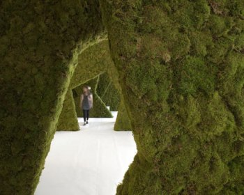 http://www.dezeen.com/2010/06/22/moss-your-city-by-pushak/