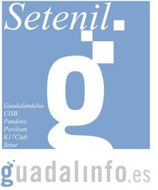 Logotipo de Guadalinfo, un proyecto de la Junta de Andalucía