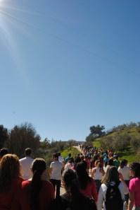 Camino de Los Montecillos. Foto: ÁNGEL MEDINA LAÍN.
