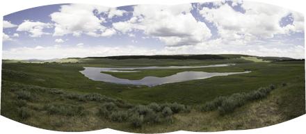 Foreground grassland