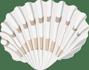 Rock-Pool-Shell-Fish-Barry-Brunswick-Blog