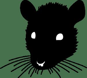 Story-time-Sewer-Poachers-Rat-by-Barry-Brunswick