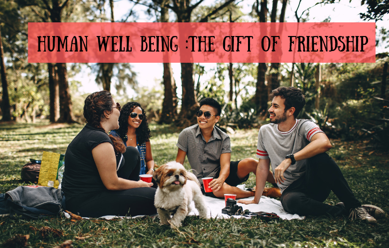 Human Wellbeing: The Gift of Friendship