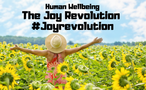 Human-Wellbeing-the-Joy-Revolution-by-Barry-Brunswick
