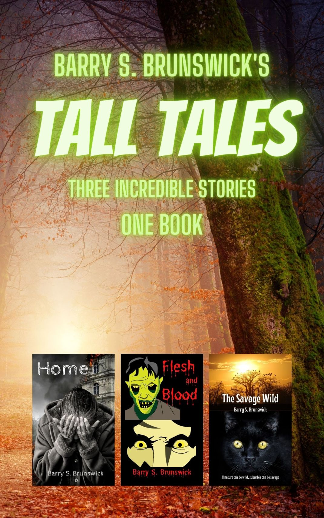 Barry-S-Brunswick-Tall-Tales-Short-Stories-Collection