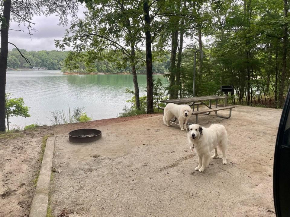 Duckett Mill Campground Site 3