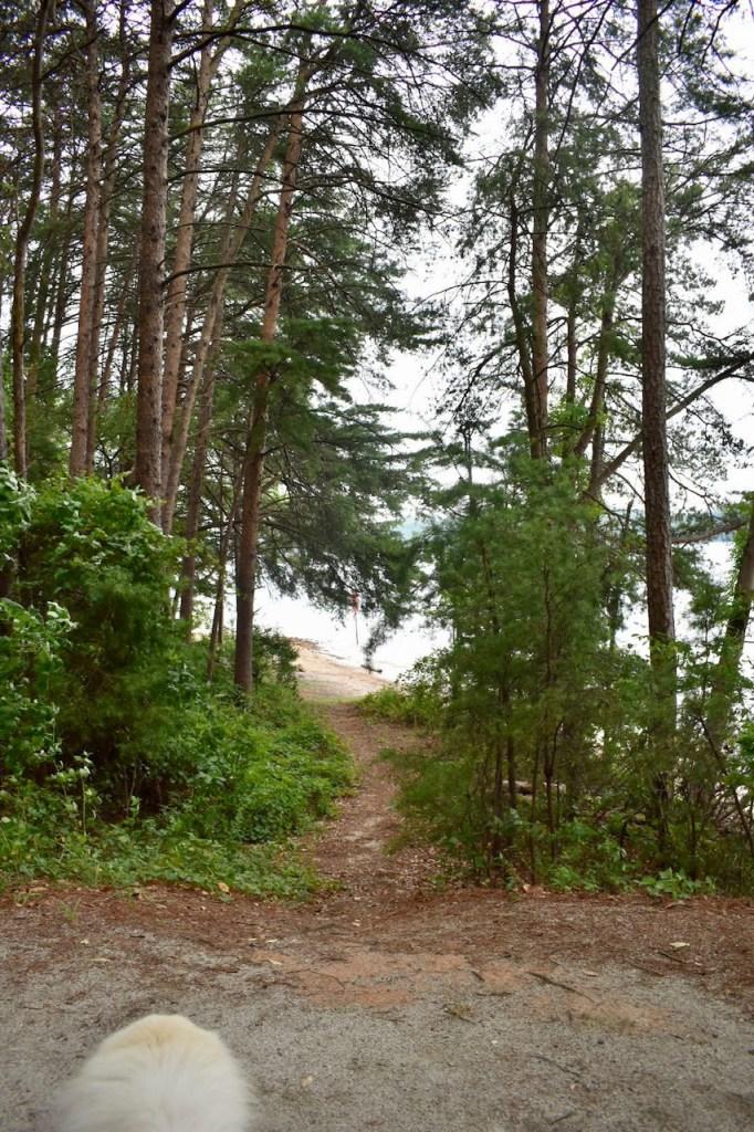 Duckett Mill Campground site 49