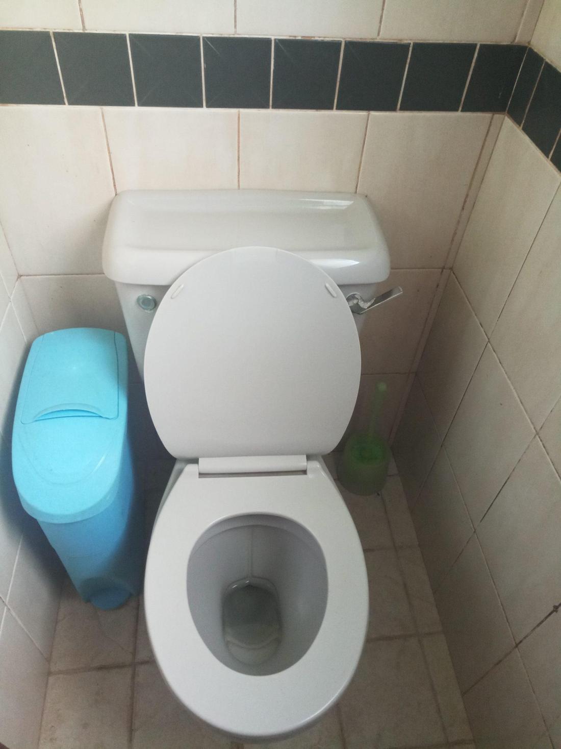 sanitary_bin_services