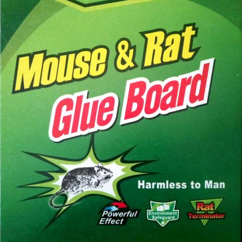 mouse-rat-glue-board