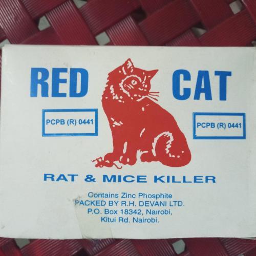 red-cat