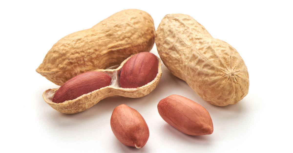 Groundnuts Farming in Kenya (Peanuts)