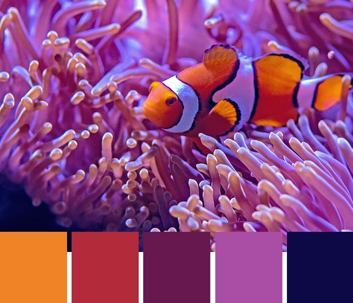 Need a creative spark? Try these tropical color palettes to inspire your next design project. Hex codes included!