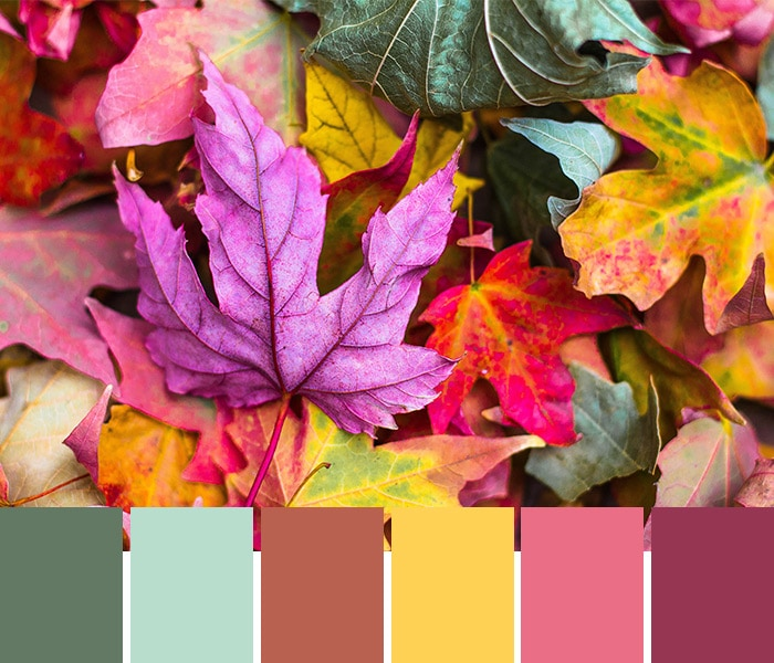 Need a creative spark? Try these cozy color palettes to inspire your next design project. Hex codes included!