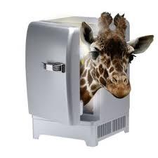 giraffe.2