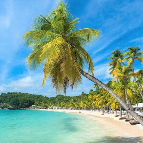 travel to the caribbean islands