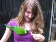 In the aviary where this bird really liked my necklace.