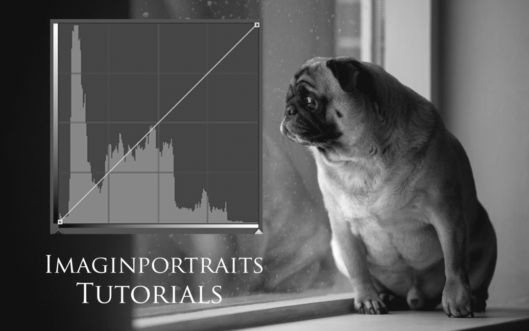 Why the Histogram will be your new best friend