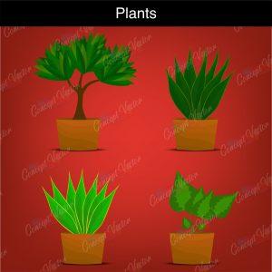 Tress-and-plants_global-plants_global_plants08-2-scaled
