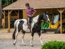 Romanian Cowboy 1