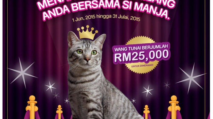 Whiskas National Cat of the Year (2)