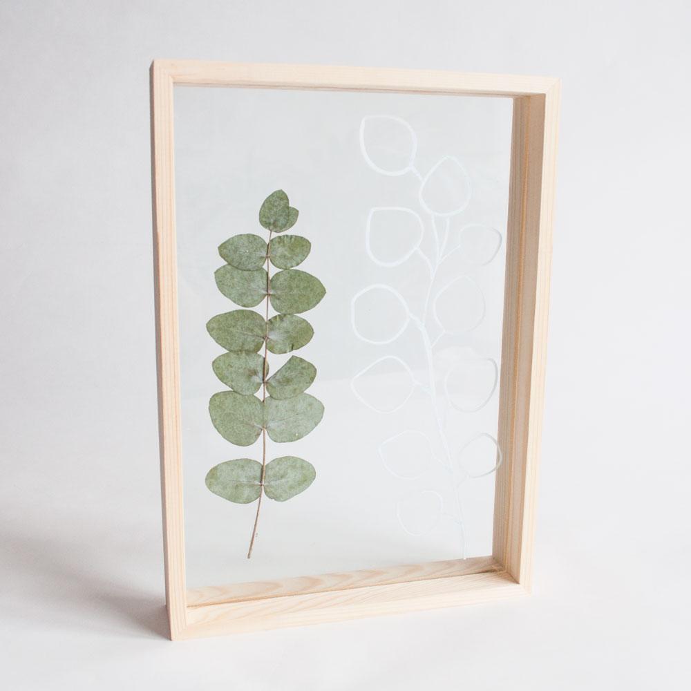 diy eucalyptus fotolijst | IMAKIN