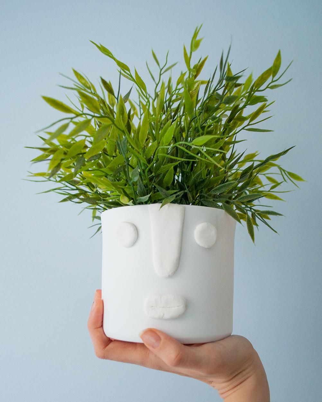 diy face planter gezicht plantenpot | IMAKIN