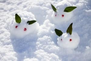 冬に雪が降る理由
