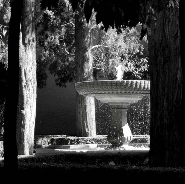 b and w photo of fountain with water