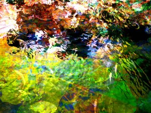My-Abstracted-Pond