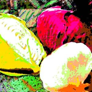 Onions-with-Garlic-III