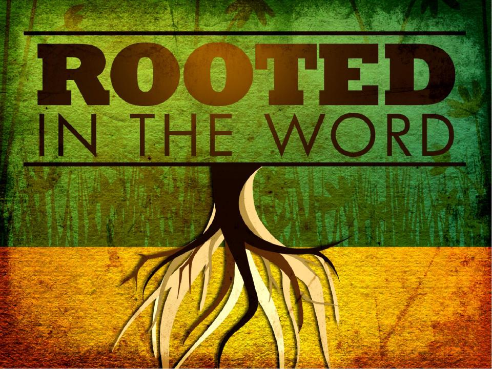 Rooted in The Word of God