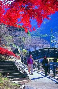 秋の大川内山