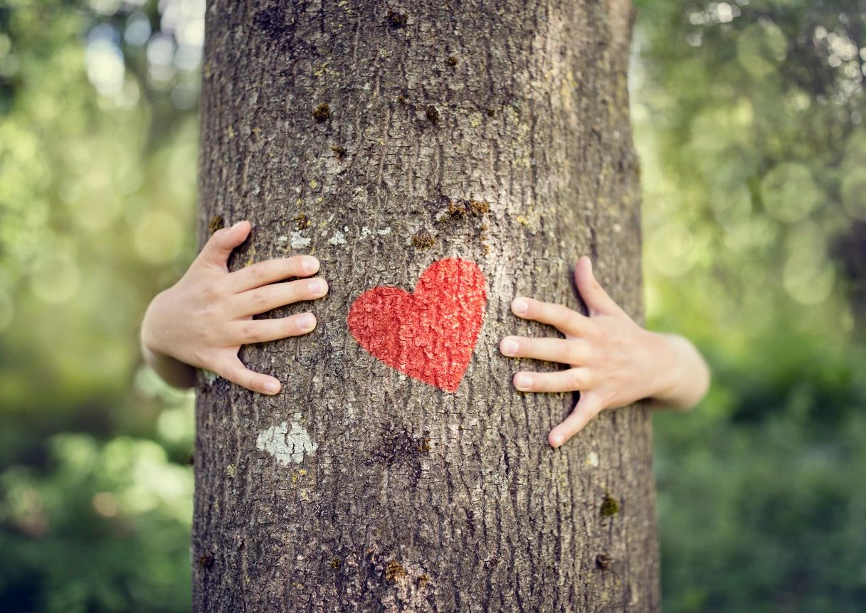 Two hands grasp either side of a tree trunk. The person is otherwise hidden behind the tree. A red heart is painted on the tree between the individual's hands.