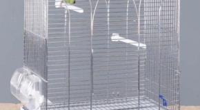 Jaulas para agapornis y periquitos