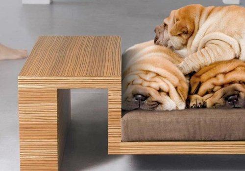 camas-diseno-mascotas-divanato