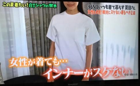 【マツコの知らない世界】チクスケしない白Tシャツの名前は?