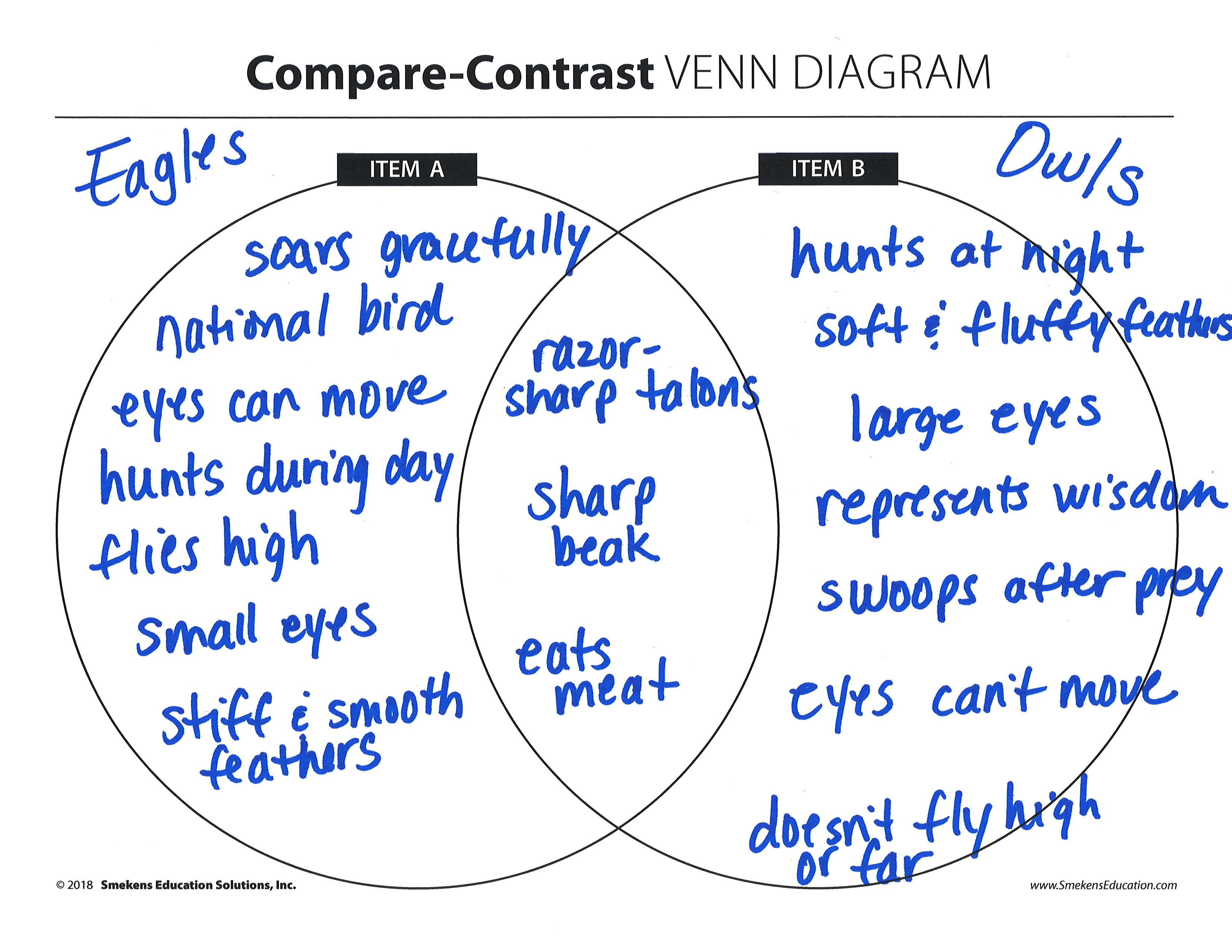 T Chart Compare And Contrast Forms Cartoon 02 08
