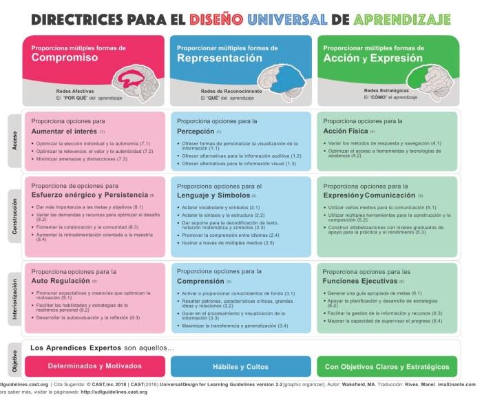 Diseño Universal de Aprendizaje: Qué, cómo y porqué