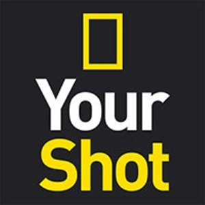 Nat Geo Your Shot