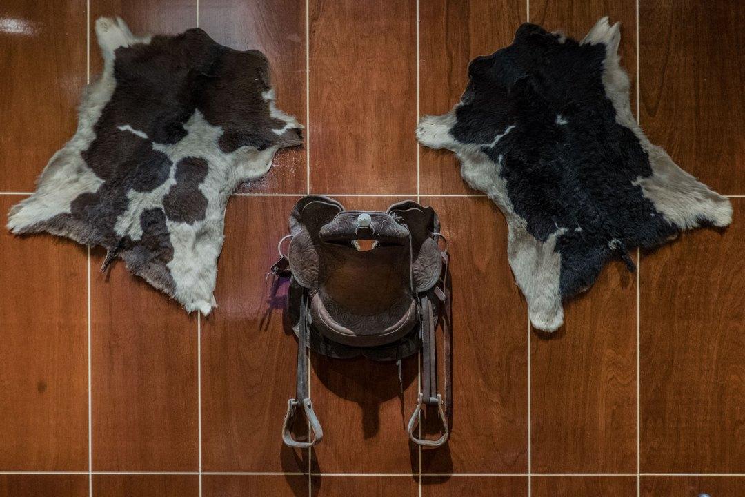 cow-skin-at-Rainhas-Churrascaria-Corona-Queens-NYC-1600x1066