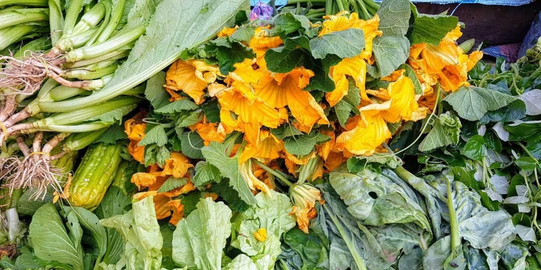 orange-flower-1600x800