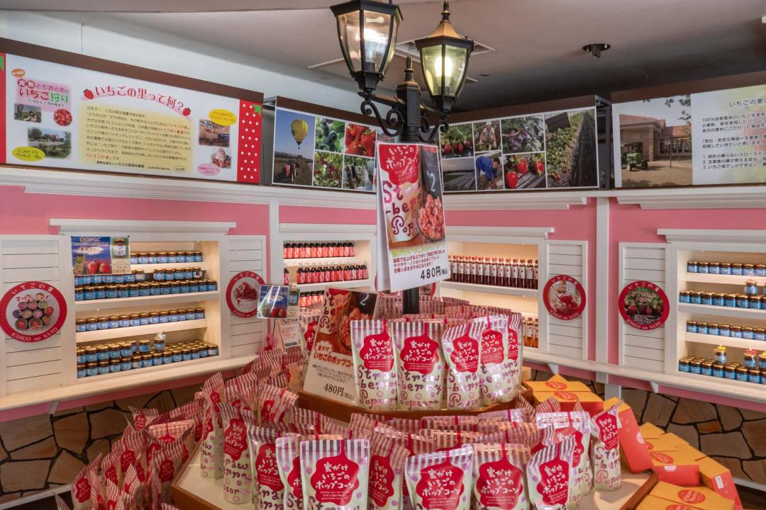 Strawberry-popcorn-&-jam-bandai-sweet-shop-Nikko-1600x1067