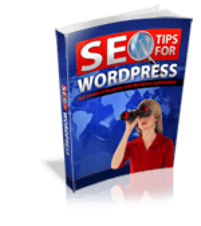 SEO Tips For Wordpress 150 - <b>Keyword Researcher Bonuses And Review Video<b> | IM Tools