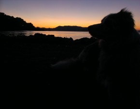 Original of Sky against the sunset