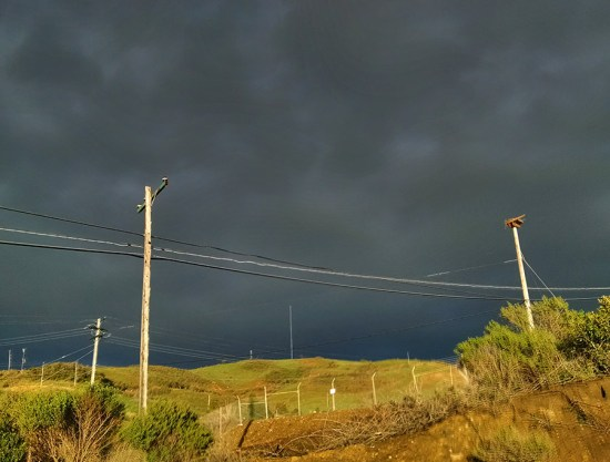 sun_after_rain