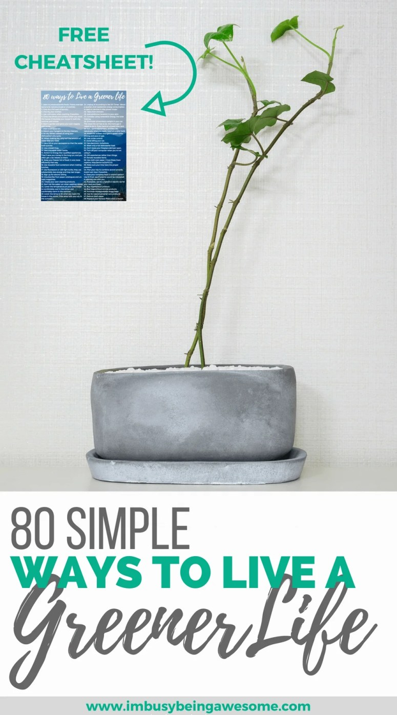 Simple ways to live a greener lifestyle. Environmental, Environmentally friendly, eco friendly, green, go green, earth, recycle, reduce, reuse, minimalist, green living, tree hugger #Environmental #Environmentallyfriendly #ecofriendly #green #gogreen #earth #recycle #reduce #reuse #minimalist #greenliving #minimalistliving #minimalliving