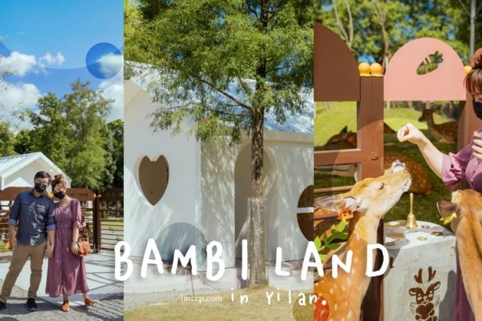 宜蘭情侶約會景點推薦:一起去斑比山丘餵小鹿 / 愛情小屋打卡分享