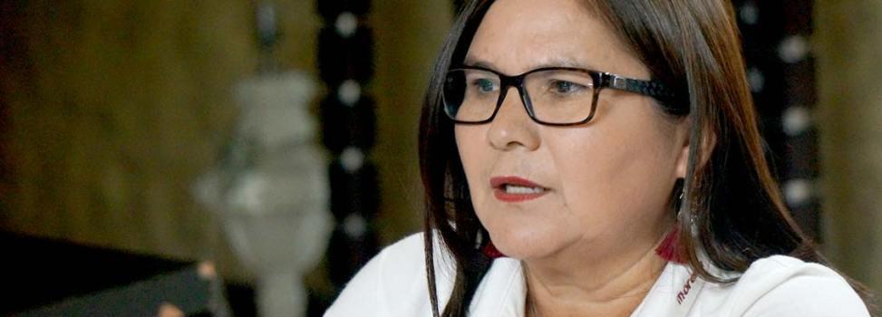 'Adhesiones de ciudadanos y liderazgos nos han acompañado en campaña': Imelda Castro